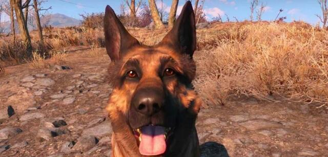 Dogmeat aus Fallout 4