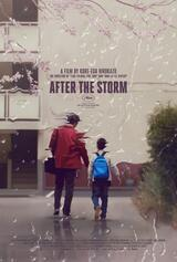 After the Storm - Poster