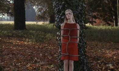 Belle de jour - Schöne des Tages mit Catherine Deneuve - Bild 1