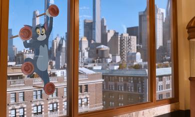 Tom & Jerry - Bild 2