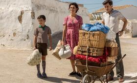 Leid und Herrlichkeit mit Penélope Cruz, Asier Flores und Raúl Arévalo - Bild 12