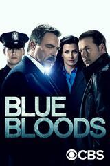 Blue Bloods - Crime Scene New York - Staffel 8 - Poster