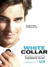 White Collar - Staffel 2 - Poster