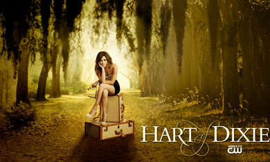 Hart of Dixie - Bild 4