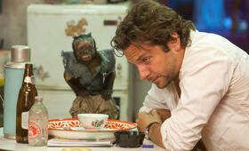 Hangover 2 mit Bradley Cooper - Bild 41