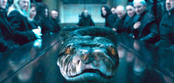 Harry Potters berühmteste Schlange: Nagini