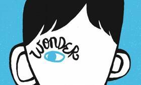 Wonder - Bild 67