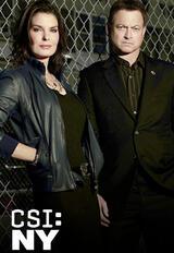 CSI: NY - Staffel 9 - Poster