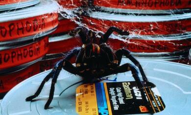 Arachnophobia - Bild 1