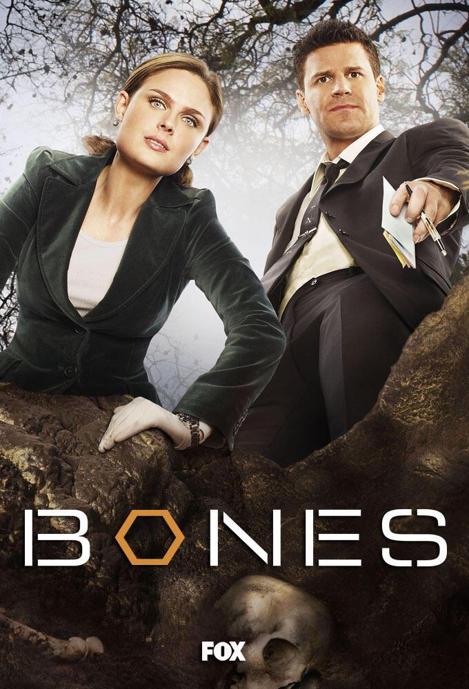 Bones Staffeln
