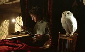 Harry Potter und der Gefangene von Askaban mit Daniel Radcliffe - Bild 20