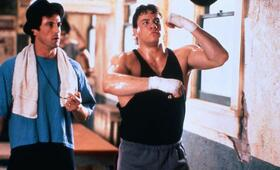 Rocky V mit Sylvester Stallone und Tommy Morrison - Bild 259
