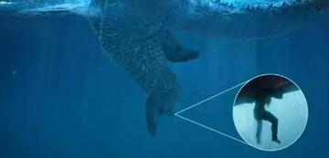 Aquaman ist hilfreich