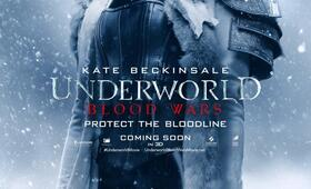 Underworld 5: Blood Wars mit Kate Beckinsale - Bild 117
