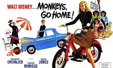 Schmeißt die Affen raus - Bild 7