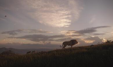 Der König der Löwen - Bild 10