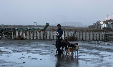 Dogman mit Marcello Fonte - Bild 5