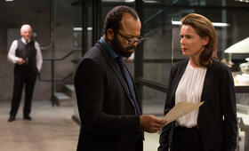 Westworld, Westworld Staffel 1 mit Jeffrey Wright - Bild 35