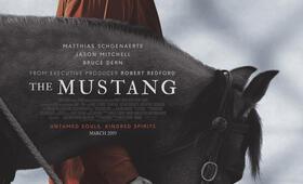 The Mustang  mit Matthias Schoenaerts - Bild 18