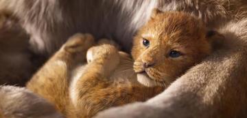 Der König der Löwen: Baby Simba