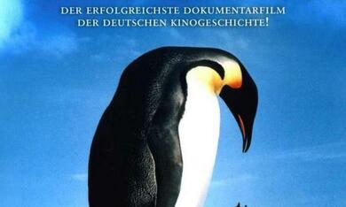 Die Reise der Pinguine - Bild 2