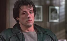 Rocky mit Sylvester Stallone - Bild 21