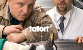 Tatort: Schlangengrube - Bild 18