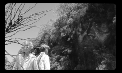 The Wild Boys - Bild 2