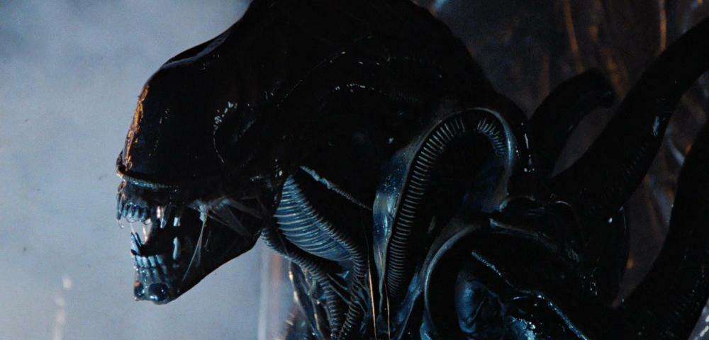Alien: Covenant - So gefährlich sind die neuen Xenomorphs