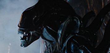 Bild zu:  Alien