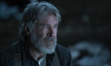 Ruf der Wildnis mit Harrison Ford - Bild 5