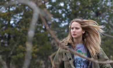 Winter's Bone mit Jennifer Lawrence - Bild 4