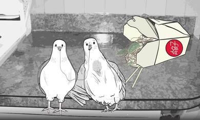 Animals. - Bild 11