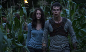 Maze Runner - Die Auserwählten im Labyrinth mit Kaya Scodelario und Dylan O'Brien - Bild 52
