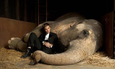 Wasser für die Elefanten - Bild 9