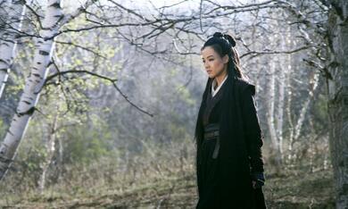 The Assassin mit Qi Shu - Bild 7