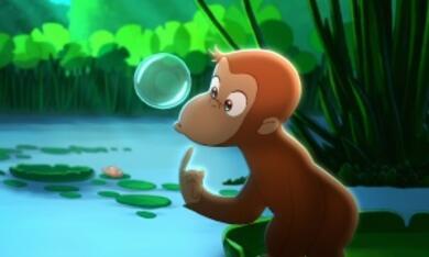 Coco, der neugierige Affe - Bild 10