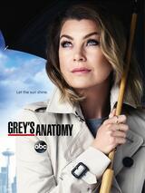 Grey's Anatomy - Staffel 12 - Poster