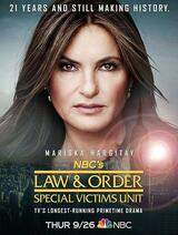 Law & Order: New York - Staffel 21 - Poster