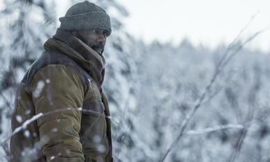 Zwischen zwei Leben - The Mountain Between Us mit Idris Elba - Bild 12