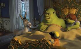 Shrek der Dritte - Bild 15