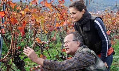 Weingut Wader - Die Erbschaft mit Henriette Richter-Röhl - Bild 10