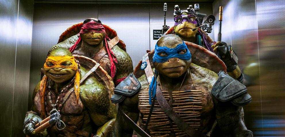 Michelangelo (orange), Raphael (rot), Leonardo (blau), Donatello (violett)
