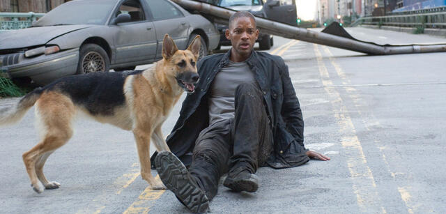 I Am Legend: Will Smith und Hund