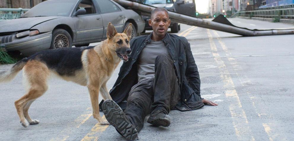 I Am Legend:Will Smith und Hund