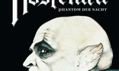 Nosferatu - Phantom der Nacht - Bild 2
