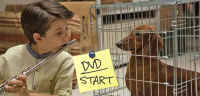 Der Wiener Dog bekommt ein Ständchen.