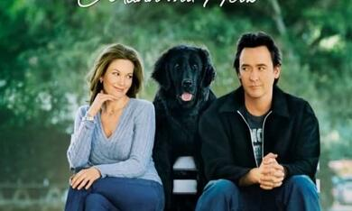 Frau mit Hund sucht Mann mit Herz - Bild 1