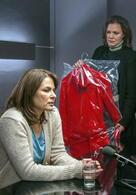 Ein starkes Team: Die Frau im roten Kleid