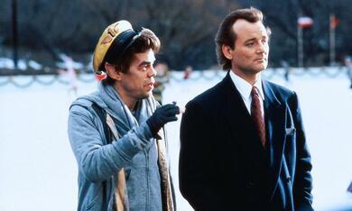 Die Geister, die ich rief... mit Bill Murray und David Johansen - Bild 8